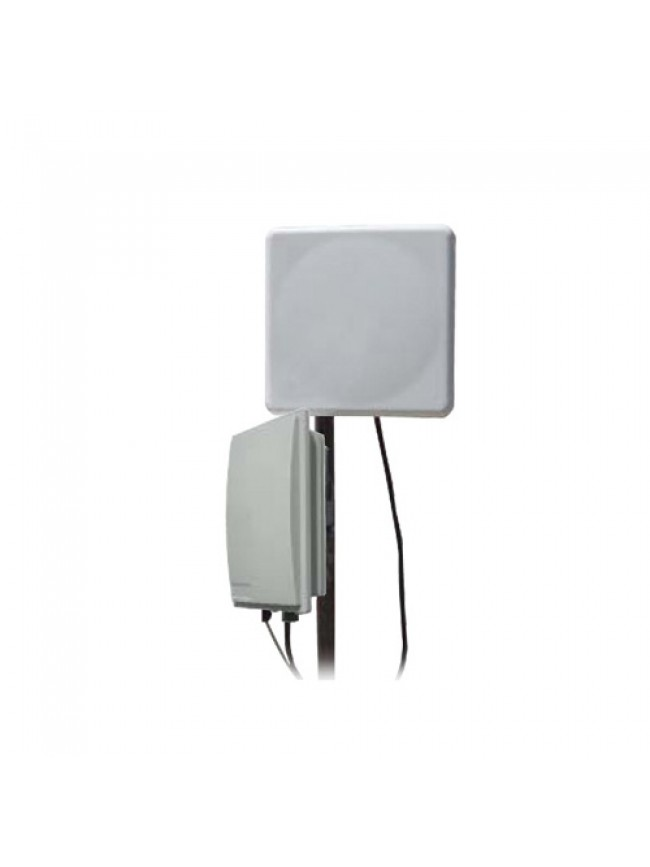 Network - WP-5XN